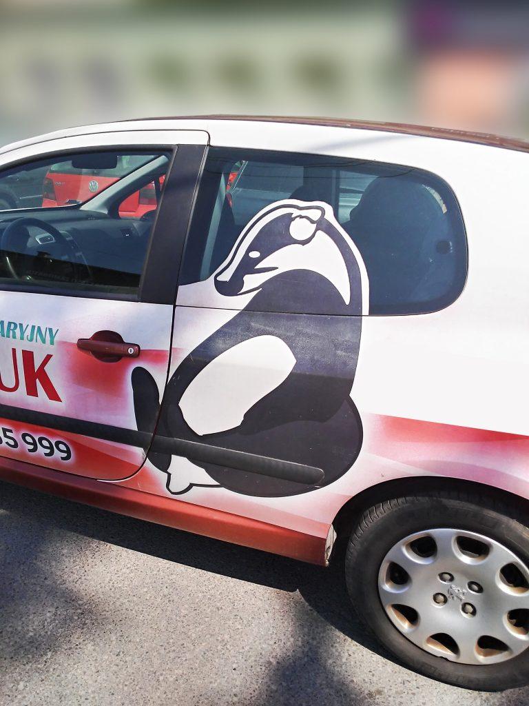 Agencja Reklamowa DKAmedia - Oferta reklama - oklejanie aut - samochód borsuk